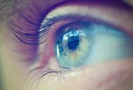Des cellules souches pour régénérer la cornée humaine